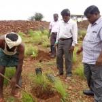 Div Forest Officer - Sri Venkataraman instructing on plantion method